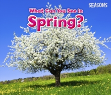 What Can You See in Spring?, Hardback