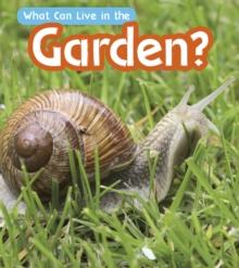 What Can Live in a Garden?, Hardback