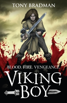 Viking Boy, Paperback