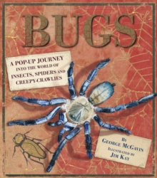 Bugs : A Pop-up Journey into the World of Insects, Spiders and Creepy-crawlies, Hardback Book