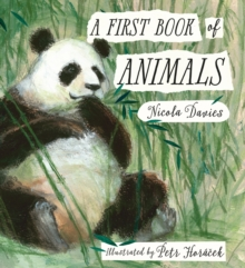 A First Book of Animals, Hardback