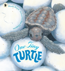 One Tiny Turtle, Paperback
