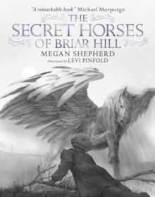 The Secret Horses of Briar Hill, Hardback Book