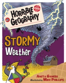 Stormy Weather, Paperback