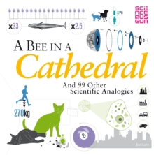 A Bee in a Cathedral : And 99 Other Scientific Analogies, Paperback Book
