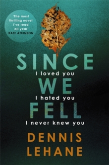 Since We Fell, Hardback Book