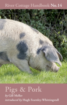 Pigs & Pork : River Cottage Handbook No.14, Hardback Book