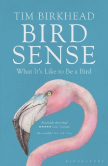 Bird Sense : What it's Like to be a Bird, Paperback