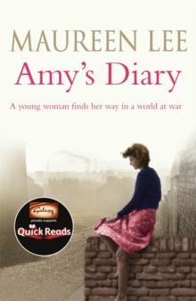 Amy's Diary, Paperback