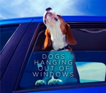 Dogs Hanging out of Windows, Hardback