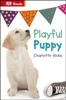 Playful Puppy, Hardback