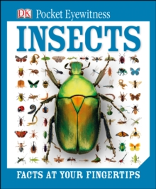 DK Pocket Eyewitness Insects, Hardback Book