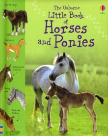 Little Book of Horses and Ponies, Hardback