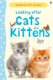 Looking After Cats and Kittens, Hardback