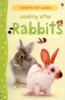 Looking After Rabbits, Hardback