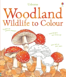 Woodland Wildlife to Colour, Paperback