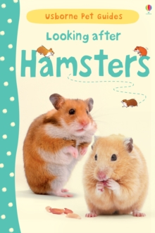 Looking After Hamsters, Hardback