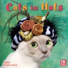 CATS IN HATS W 2017,