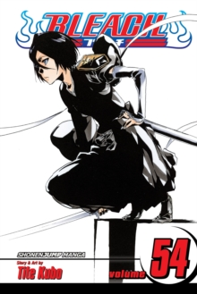 Bleach, Paperback Book
