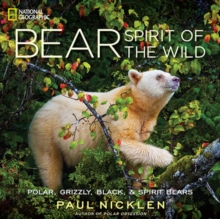 Bear : Spirit of the Wild, Hardback