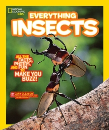 Everything Insects, Paperback
