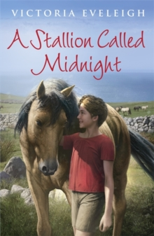 A Stallion Called Midnight, Paperback