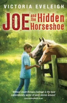 Joe and the Hidden Horseshoe : A Boy and His Horses, Paperback Book