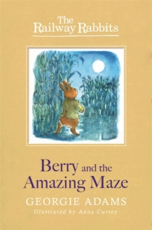 Berry and the Amazing Maze : Book 12, Paperback