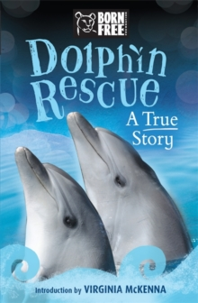 Dolphin Rescue : A True Story, Paperback Book
