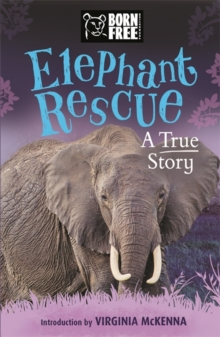 Elephant Rescue : A True Story, Paperback Book
