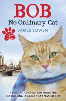 Bob : No Ordinary Cat, Paperback
