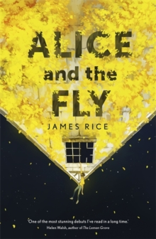 Alice and the Fly, Hardback