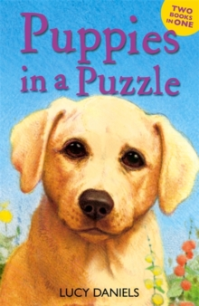 Puppies in a Puzzle : Dalmatian in the Dales & Labrador on the Lawn, Paperback Book