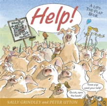 Help : Lift-The-Flap Book, Hardback