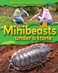 Minibeasts Under a Stone, Paperback