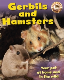 Gerbils and Hamsters, Paperback