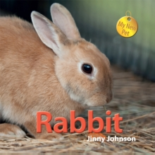Rabbit, Hardback Book