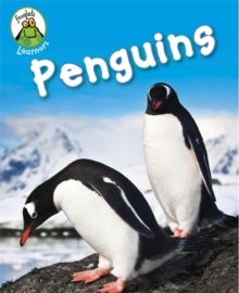 Penguins, Hardback