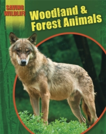 Woodland and Forest Animals, Paperback