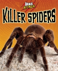 Killer Spiders, Paperback Book