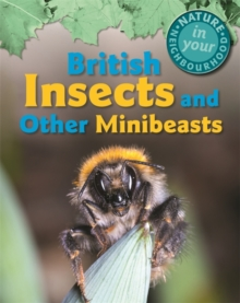 British Insects and Other Minibeasts, Hardback