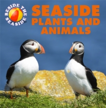 Seaside Plants and Animals, Hardback Book