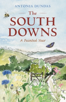 The South Downs : A Painted Year, Hardback Book