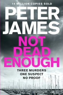 Not Dead Enough, Paperback
