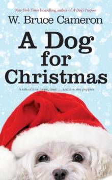 A Dog for Christmas, Paperback Book