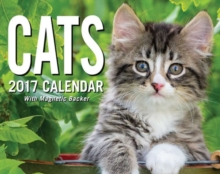 CATS 2017 MINI DAYTODAY CALENDAR,