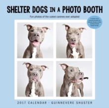 SHELTER DOGS IN A PHOTO BOOTH 2017 WALL,