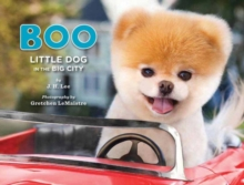 Boo : Little Dog in the Big City, Hardback