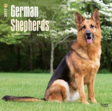 GERMAN SHEPHERDS 2017 WALL CALENDAR,