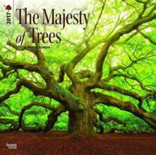 MAJESTY OF TREES THE 2017 WALL CALENDAR,